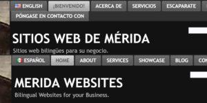 bilingual-websites-2